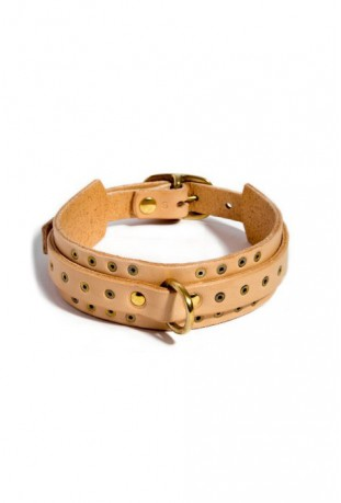 Thin Studded Collar